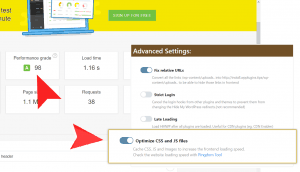 Advanced Settings CSS and JS loading optimize